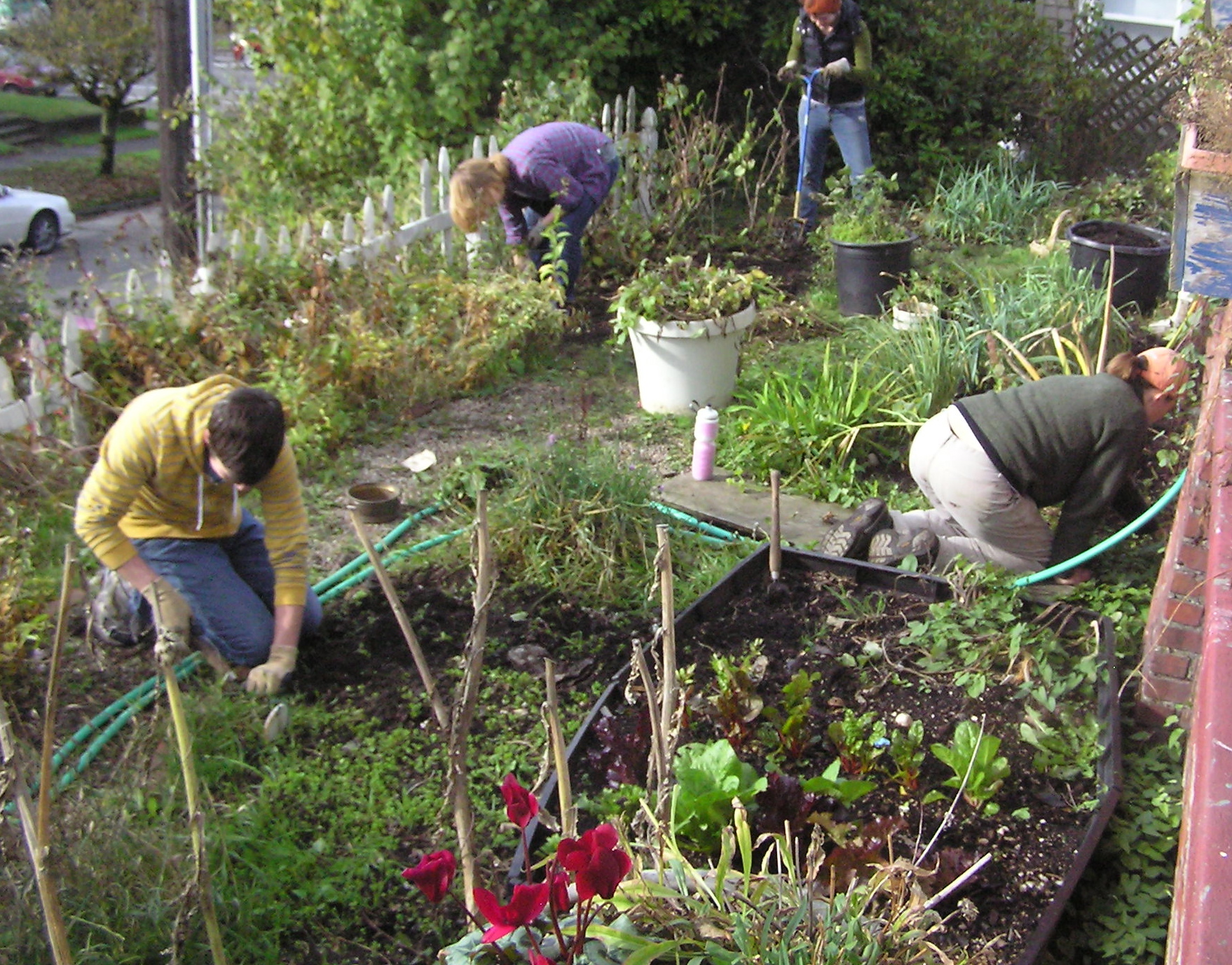 Garden day at the Mustard Seed House