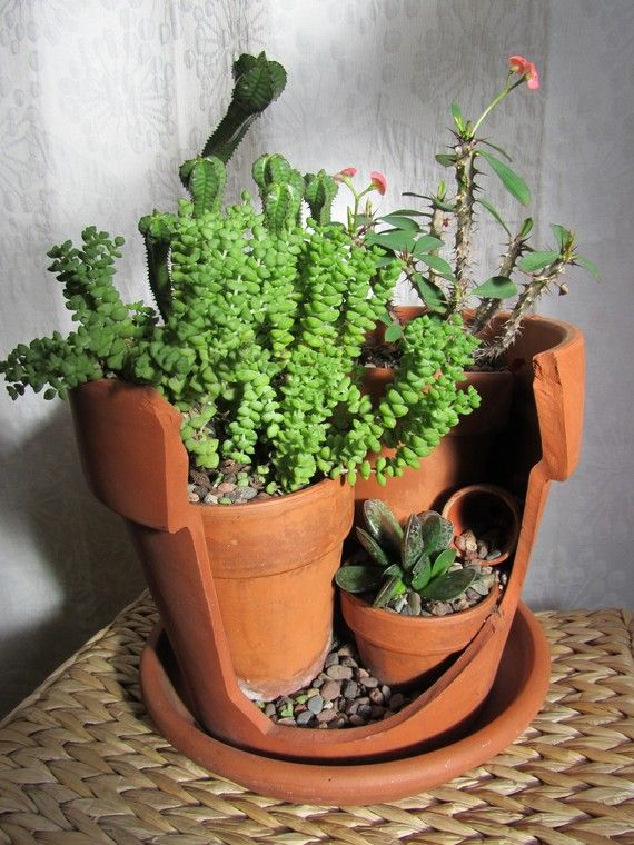 Broken pots from Salvaged Nature http://www.etsy.com/shop/SalvagedNature