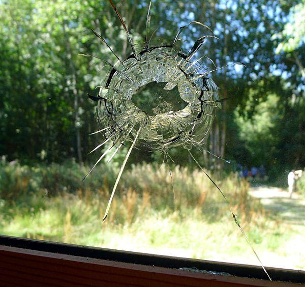 window.shot_