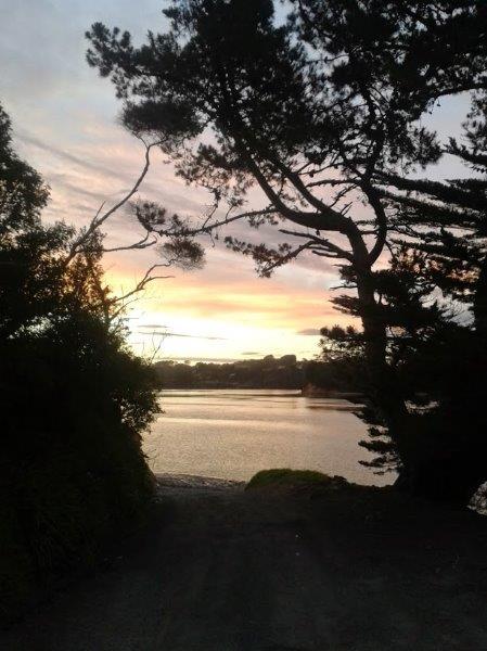 Inner Harbour Whenuapai