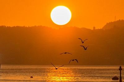 sunset in bergen ian thomson2 - lynn babb