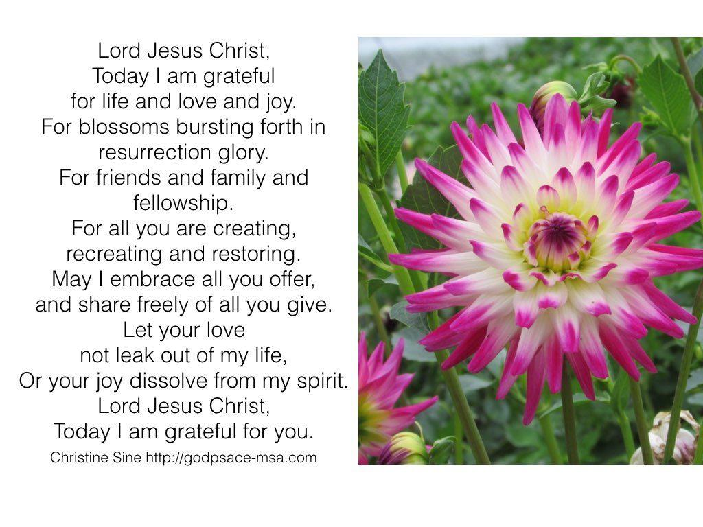 today I am grateful.001