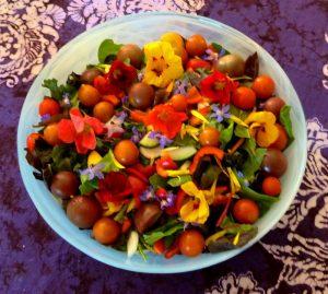 sm_garden-salad