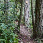 2016-prayer.trail.5