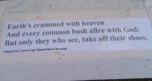 Burning Bush Quote